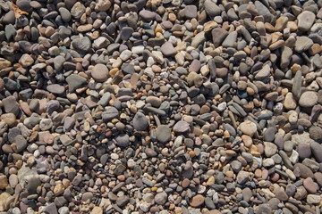 Natural pebble rocks in real natural riverside as texture background