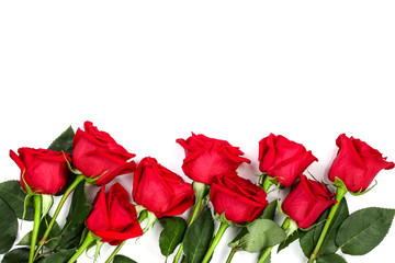 beautiful red rose with leaves isolated on white background with copy space for your text. Top view. Flat lay pattern
