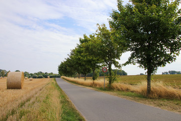 Ostseeradfernweg, Boltenhagen, Beckerwitz, Wismar, Baltic Sea Germany