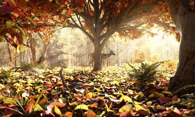 Reh in herbstlichem Wald