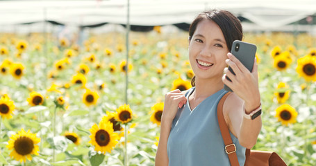 Woman taking selfie on cellphone at sunflower field