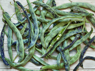 Background of large green beans