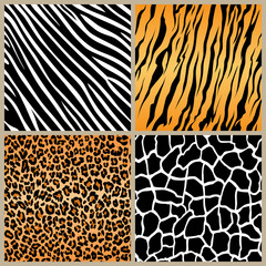 set safari jungle animal fur stripe animals bengal tiger giraffe zebra texture pattern seamless repeating white black orange brown