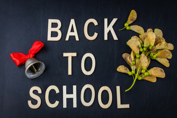 Back to school concept. Top view banner school bell and autumn dry leaves over classroom blackboard background