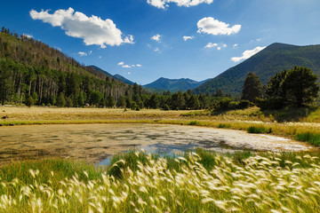 Foto op Canvas Arizona A bright day light landscape, san francisco peak, flagstaff, arizona in the backdrop