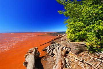Wall Mural - Lake Superior Mud from Rainstorm