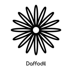 Daffodil icon vector isolated on white background, Daffodil sign , line or linear design elements in outline style