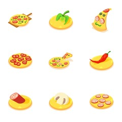 Homemade pizza icons set. Isometric set of 9 homemade pizza vector icons for web isolated on white background