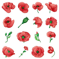 Poppy flower remembrance day icons set. Cartoon illustration of 9 poppy flower remembrance day vector icons for web