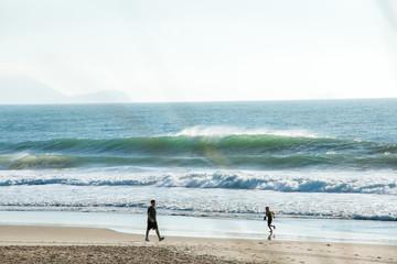 praia, beach, animais, gaivota, mar, oceano, onda, areia, pesca, pescador, brasil, florianopolis, barco, rede de pesca, rede, água, água salgada, ingleses