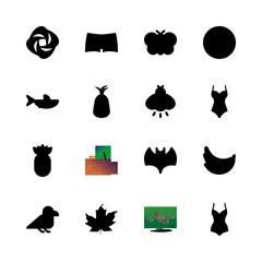 16 tropical icons set