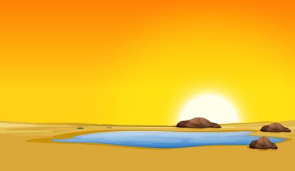 Beautiful sunset pond desert scene