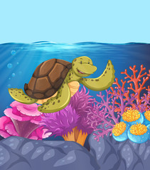 Happy turtle underwater reef scene