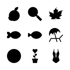 9 tropical icons set