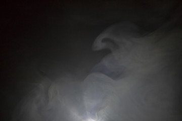 smoke abstract background .