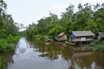 A view of riverside village of Sekonyer river, Indonesia