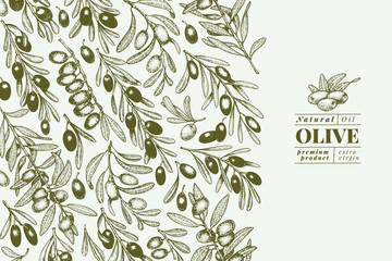 Olive tree banner template. Vector vintage illustration. Hand drawn engraved style background. Design for olive oil, olive packaging, natural cosmetics, health care products. Retro style image.