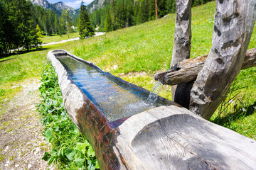 Pragser Wildsee 2018-20 Wassertrog mit Quellwasser auf einer Alm Südtirol Dolomiten