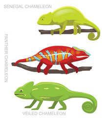 Lizard Veiled Chameleon Set Cartoon Vector Illustration