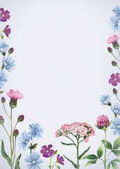 Watercolor illustrations of wild flowers. Perfect for invitations or greeting cards