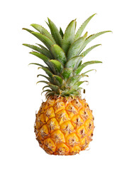 Wall Mural - Ripe pineapple isolated