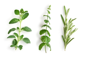 Oregano, peppermint and rosemary.
