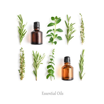 Bottles with essential oils and fresh herbs