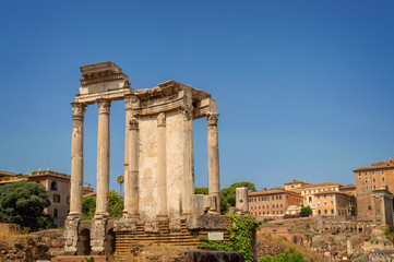 Wall Mural - Ruins of the Roman Forum in Rome, Italy