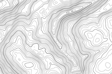 Vector contour topographic map background. Topography and geography map grid abstract backdrop. Business concept. Vector illustration Wall mural
