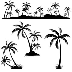 Set of palm trees. Coconut palm trees isolated on white background.
