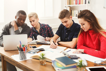 Multiethnic classmates preparing for exams together