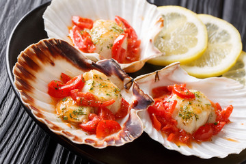 Natural food: scallops in a shell with sauce, tomatoes, parsley and lemon close-up. horizontal