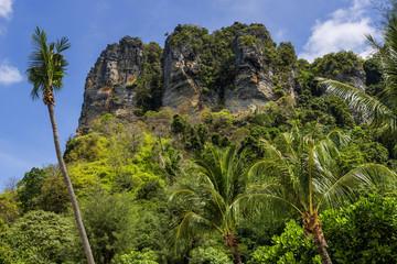 Tropische Landschaft bei Krabi, Thailand