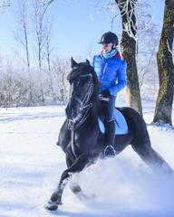 Pferd und Reiterin haben Spass im Schnee