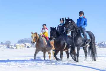Türaufkleber Reiten gutgelaunt mit den Pferden im Schnee unterwegs