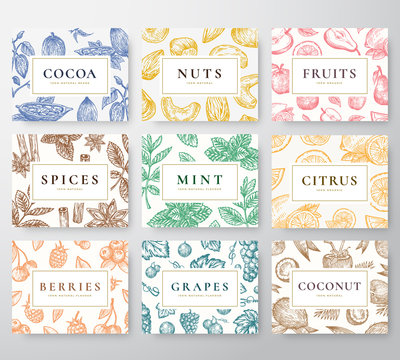 Hand Drawn Nuts, Spices and Berries with Fruits and Coconut Cards Set. Abstract Vector Sketch Backgrounds Collection with Classy Retro Typography. Patterns Collection.
