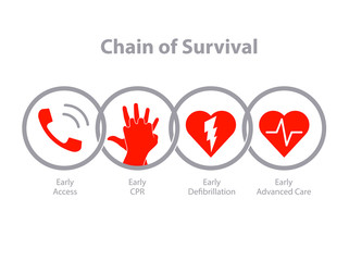 The survival chain.