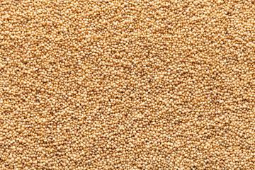 closeup amaranth seeds organic food background
