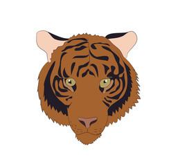 portrait of an orange tiger, vector