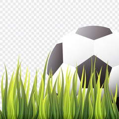 Realistic Football or Soccer on Green Grass design,Modern Style,isolated background,vector,illustration.