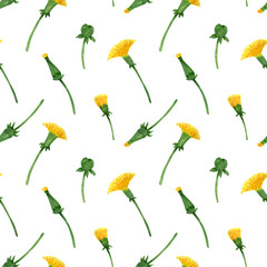 Watercolor seamless pattern of dandelion buds and inflorescences