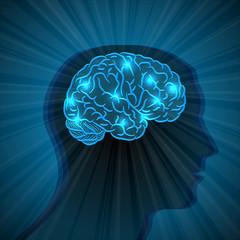 Human head and brain