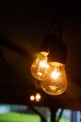 String Antique Light Bulbs