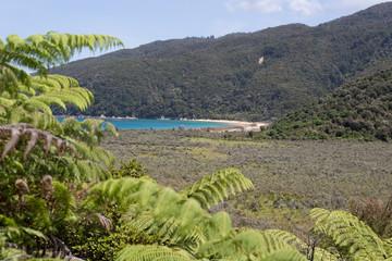 Abel Tasman track New Zealand 1