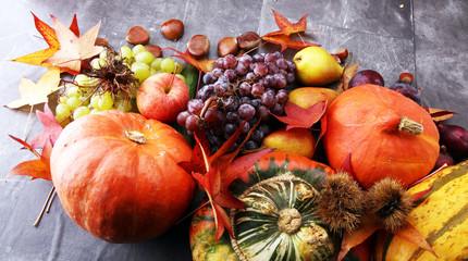 Printed kitchen splashbacks Autumn Autumn harvest seasonal fruits and vegetables on grey background.