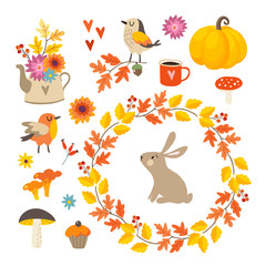 Set of cute hand-drawn autumn elements. Birds and rabbit animal. Flowers, mushrooms, pumpkin and leaves collection. Fall, thanksgiving concept. Isolated vector illustrations, objects. Flat design.