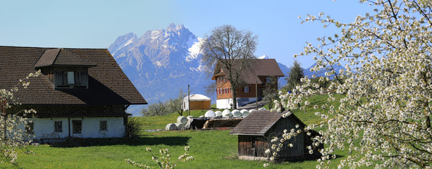 Spring in an old Swiss village at the foot of Rigi mountain. Municipality of Weggis, Switzerland.