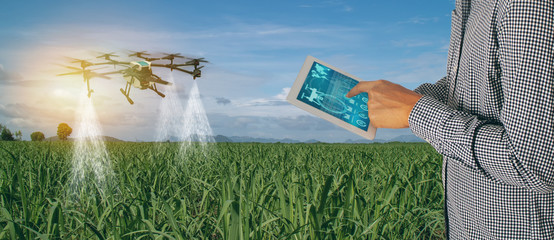 smart agriculture industry 4.0 concept,Farmer use  drone (in precision farm) use for spray a water, fertilizer or chemical to the field, farm for growth a yields,crops, control, kill the bug or weed