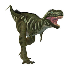 Bistahieversor Dinosaur on White - Bistahieversor was a carnivorous theropod dinosaur that lived in New Mexico, North America during the Cretaceous Period.