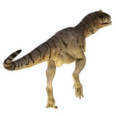 Carnotaurus sastrei Dinosaur Tail - Carnotaurus was a carnivorous theropod dinosaur that lived in Patagonia, Argentina during the Cretaceous Period.